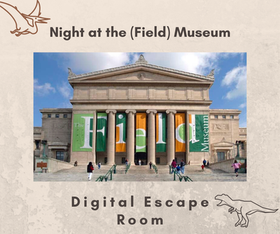Night at the (Field) Museum